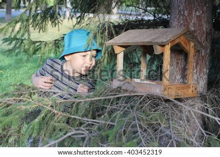 cute little boy near the bird feeder - stock photo