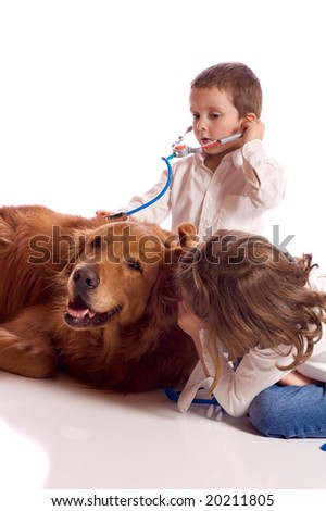 Cute little brother and sister playing veterinary with their dog - stock photo
