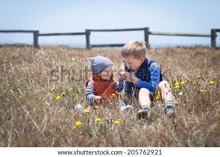 Cute little brothers sitting in a grassy field  - stock photo