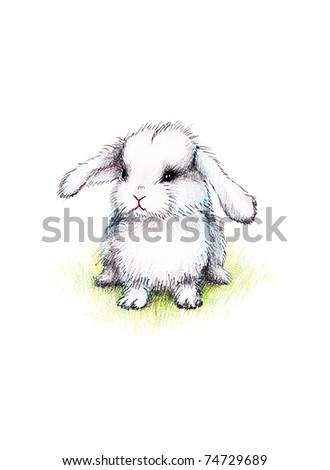 Cute little bunny on green lawn - stock photo