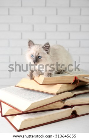 Cat Put His Paw On Computer Stock Photo 199857422 - Shutterstock