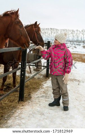 Cute little girl and horses on farm in winter - stock photo