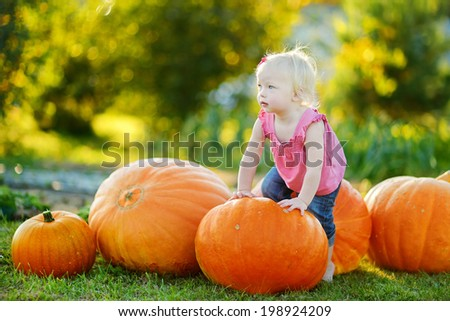 Cute little girl and huge pumpkins on a pumpkin patch