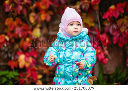 cute little girl in the blue jacket on the background of red vine leaves