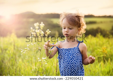Cute little girl is playing in summer meadow - stock photo