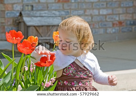 Cute Little Girl Playing with Flowers - stock photo