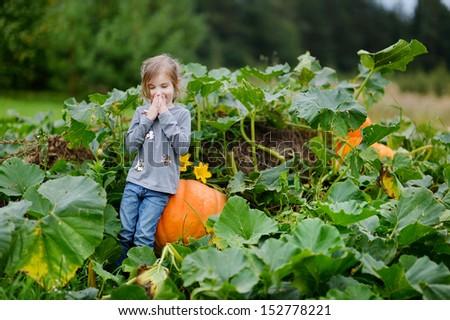 Cute little girl sitting on a pumpkin in a pumpkin patch