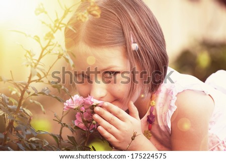 Cute little girl smelling a rose in the garden in the sunset - stock photo