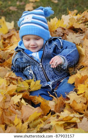 cute little guy in the autumn leaves - stock photo