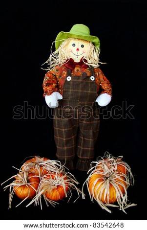 Cute Little Thanksgiving Scarecrow - stock photo