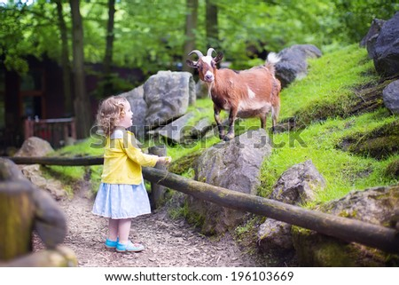 Cute little toddler girl with curly hear wearing a colorful dress feeding a goat playing and having fun watching animals on a day trip to a modern city zoo on a hot summer day - stock photo