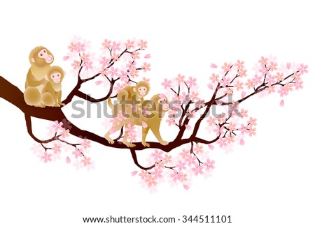 Cute monkey cherry greeting cards