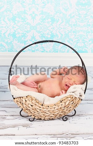 Cute newborn baby boy in Cute basket - stock photo
