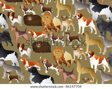 Cute pedigree dog wallpaper background design. Imcludes pekingese, pug, chihuahua, saint bernard, newfoundland, beagle, terrier etc. - stock photo