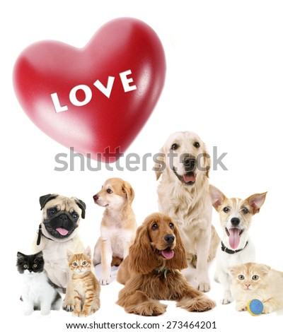 Cute pets with big heart on light background - stock photo