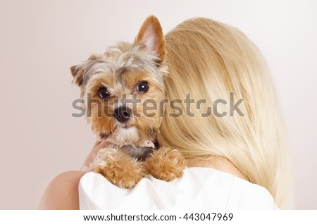 Cute portrait of Yorkshire Terrier on young blonde woman shoulders, studio shot