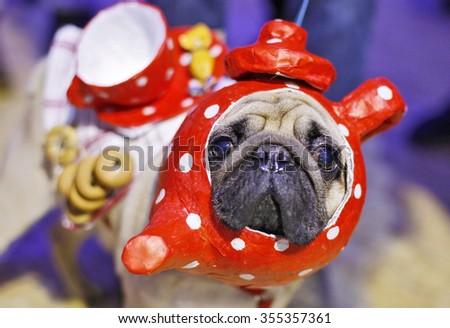 cute pug dog with tea-set costume - stock photo