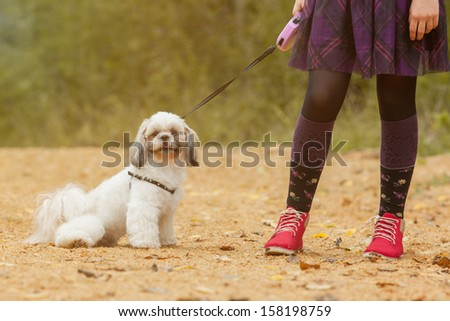 Cute puppy sitting near of feet his little owner