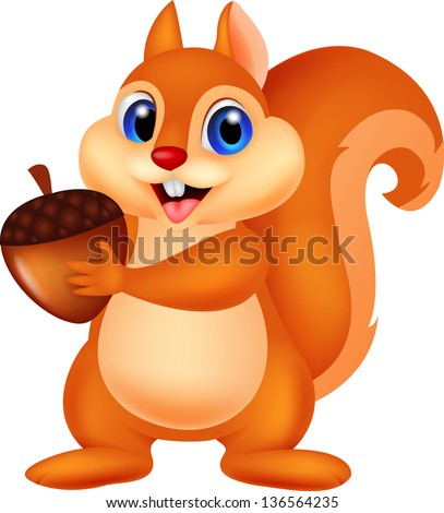 Cute squirrel holding nut - stock photo