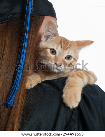 Cute Tabby kitten looking over graduate's shoulder.