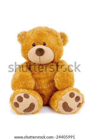 Cute teddy bear - stock photo