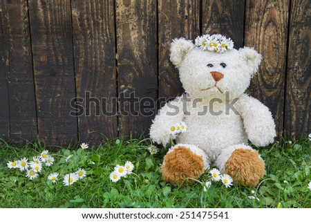 Cute teddy bear sitting alone in the green with old wooden background. - stock photo