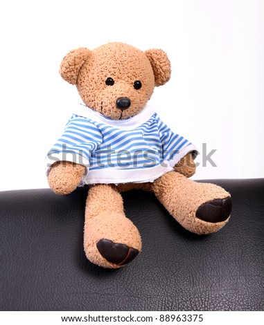 cute teddy bear sitting on furniture. photography - stock photo