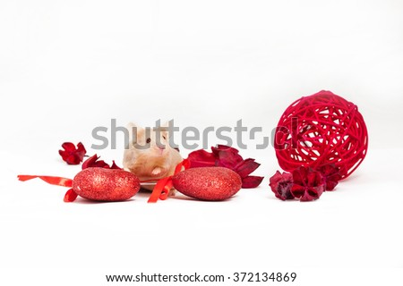 Cute tiny golden mouse sits amid dry red flowers and shiny decorative hearts. Saint Valentine's day. - stock photo