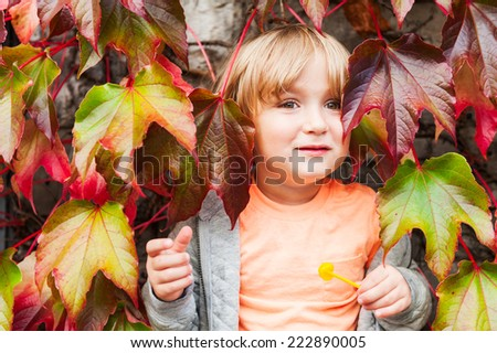 Cute toddler boy having fun outdoors, hiding in ivy leaves - stock photo