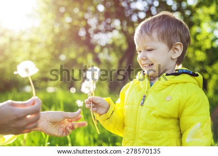 Cute toddler boy making a with before blowing dried dandelions in mother's hands - stock photo