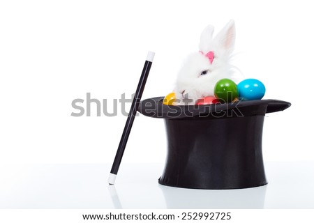 Cute white rabbit with colorful easter eggs peeking out of a magician hat - isolated - stock photo