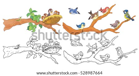 Cute Woodland Animals. Cute Sparrows And A Nightingale Sitting On The  Branch. Coloring Book