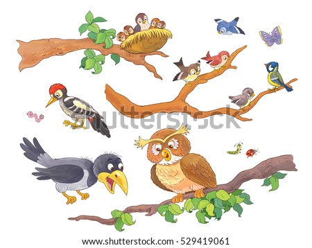 Cute Woodland Animals. Forest Birds Sitting On Branches. Cute Owl,  Woodpecker, Crow