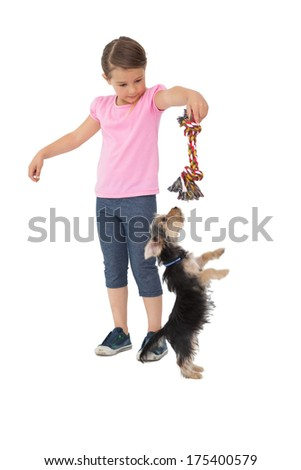 Cute yorkshire terrier puppy playing with little girl holding chew toy on white background - stock photo
