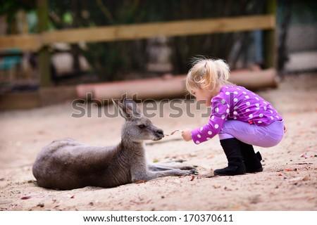 cute young girl and kangaroo in the zoo - stock photo