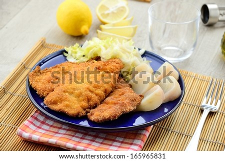 Cutlet with salad and turnip - stock photo