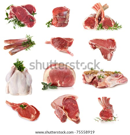 Cuts of raw meat, isolated on white.  Includes beef, lamb, pork and chicken. - stock photo