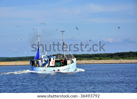 Cutter at a sea, surrounded by a lot of seagulls