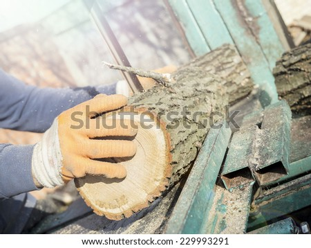 Cutting firewood, preparing for winter. Lens flare.  - stock photo