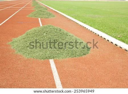 Cutting grass football field - stock photo