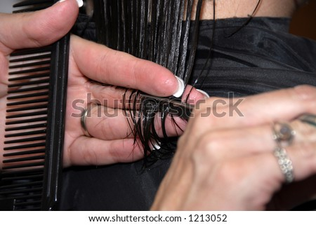 Cutting hair - stock photo