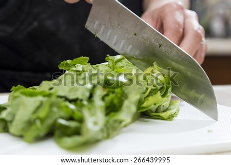 Cutting Lettuce for Salad at Home