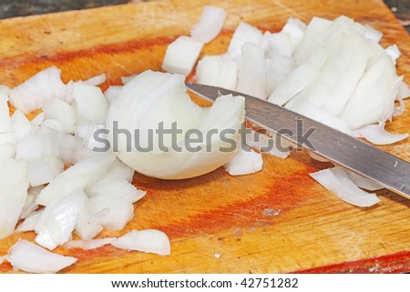 Cutting onion on the wooden board
