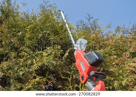 Cutting Thuja by electric telescopic fence scissors. Blue sky in the backgrounds. All potential trademarks are removed. - stock photo