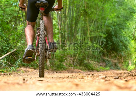 Cycling tour in the forest - stock photo