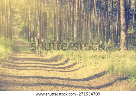 Cyclist on a forest road - stock photo