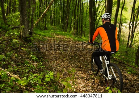 Cyclist Riding the Bike on a Trail in Summer Forest. Sport Concept.