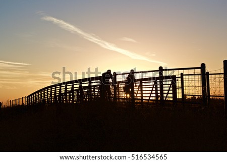 Cyclists Crossing a Footbridge-a silhouette of two cyclists crossing a wooden walkway during the setting sun