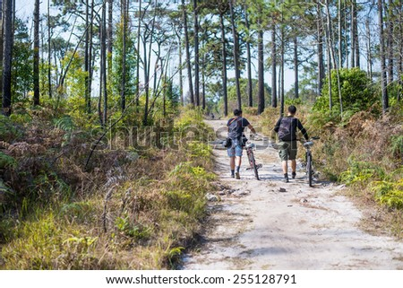 Cyclists go with bikes on a gravel road in the middle of a pine forest. - stock photo