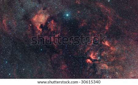 Cygnus Constellation nebularity - stock photo